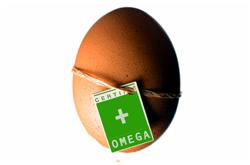 Huevo funcional
