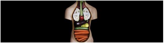 Múltiples beneficios de salud obtenidos de los fitoquímicos