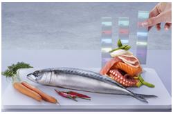 Papeles funcionales de los péptidos marinos de origen alimentario