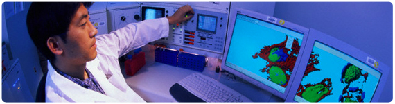 Técnica de fluorescencia para el estudio del crecimiento de Células-Beta pancreáticas