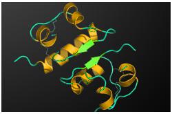 Estructura tridimensional de la insulina