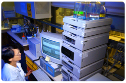 Técnico revisando los resultados del análisis de Cromatografía Liquida de Alto Desempeño (HPLC)
