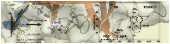 Los péptidos biomarcadores comunmente se analizan por MALDI-TOF