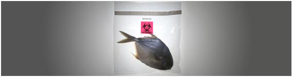 Toxinas naturales en los alimentos marinos