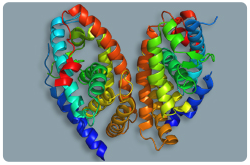 Receptor del ácido retinoico (RAR-Alfa)