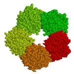 Proteína C reactiva [Modelo tridimensional]