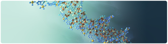 Molecula de dsRNA