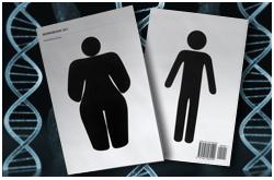 El epigenoma permite diferenciar entre individuos