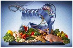 Genética humana y nutrigenómica