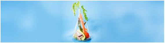 La nutrigenómica es un campo de rápida evolución que se monta en la distinción alimento-medicamento