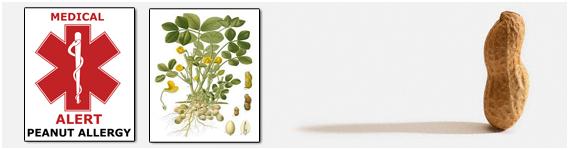 La alergia al cacahuate es causada por proteínas en la semilla y hasta ahora se han identificado 10 alérgenos en el cacahuate