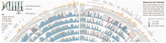 Representación gráfica del mapeo del epigenoma humano