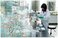 El primer campo prometedor de aplicación en la metabolómica nutricional es el descubrimiento y aplicación de biomarcadores