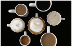 Las propiedades fisiológicas y farmacológicas de la cafeína no pueden ser explicadas por un solo mecanismo bioquímico