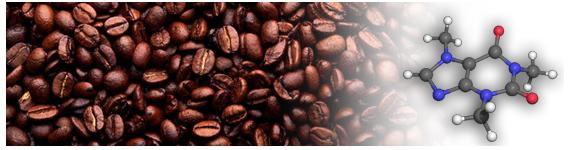 La cafeína (masa molar 194.19 g/mol) se conoce también como un alcaloide de purina