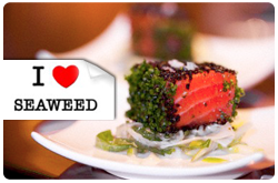 Los flavonoides y sus glicósidos presentes en algas verdes, cafés y rojas exhiben propiedades antioxidantes, y han demostrado su capacidad para actuar contra la arterioesclerosis y el cáncer