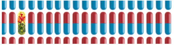 La vitamina A es un micronutrimento liposoluble que es convertido en ácido retinoico en o cerca del sitio de actividad en el cuerpo para utilizarse como regulador transcripcional