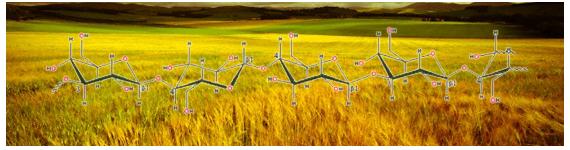 El β-glucano de avena han mostrado un efectos disminuidor de colesterol en sangre