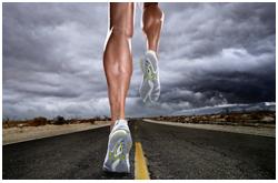 El tejido muscular puede variar su tasa metabólica en un grado mayor que cualquier otro tejido, dependiendo de las demandas a que es sometido