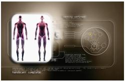 El estudio directo más completo de la composición corporal fue el Estudio de Análisis de Cadáveres en Bruselas (CAS, por sus siglas en inglés),