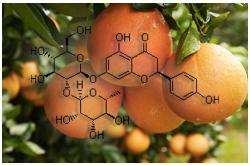 La 6',7'-dihidroxibergamotina (furanocoumarina) y la naringina (flavonoide) son algunos de los constituyentes del jugo de toronja que pueden interactuar con el medicamento