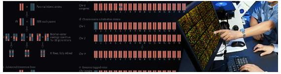El fenotipado molecular incluye típicamente micromatrices (también conocidos como microarrays o microarreglos)