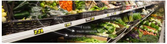 La mayoría de las frutas y verduras son alimentos que producen basicidad dado que los productos metabolizados son precursores de aniones orgánicos tales como citrato, succinato y bases conjugadas de ácidos carboxílicos
